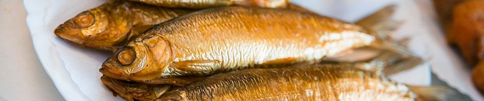 Fischgenuss - Peenefischer - Fischerei Salem
